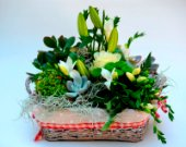Basket of succulents and flowers