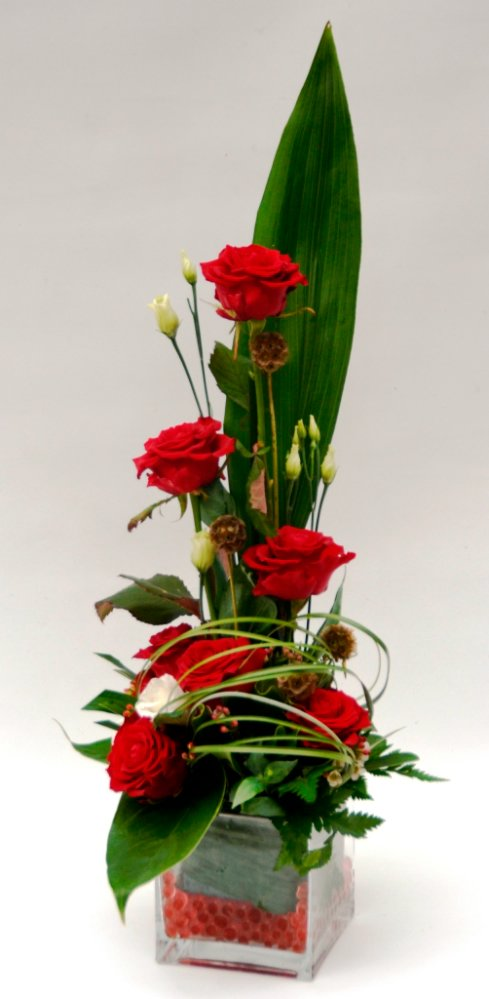 Red roses in glass cube.
