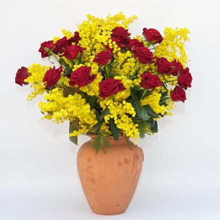 Vaso di rose rosse e mimosa fiori de berto consegna for Mimosa in vaso